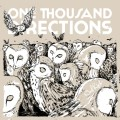 One Thousand Directions - Owl Riot 7 inch