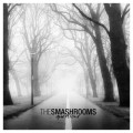The Smashrooms - Questions 7 inch