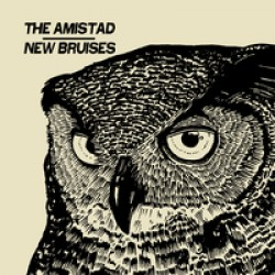 The Amistad/ New Bruisers  - AIV split 7 inch