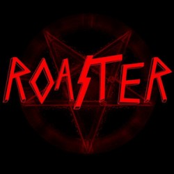 Roaster - 4 way split 10 inch