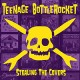 Teenage Bottlerocket - Stealing The Covers LP