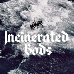 VUYVR - Incinerated Gods LP