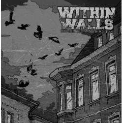Within Walls - Demolition in progress LP